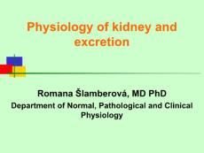 Physiology of kidney and excretion[肾脏的生理和排泄](PPT-57)