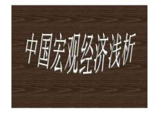 中国宏观经济浅析_1439560039