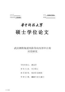 武汉钢铁集团风险导向内部审计的应用研究