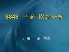 8848电子商务网站分析