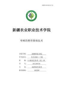 枣树的整形修剪技术(职业学院园艺毕业论文)