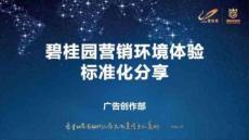 2014碧桂园营销环境体验标准化分享85p