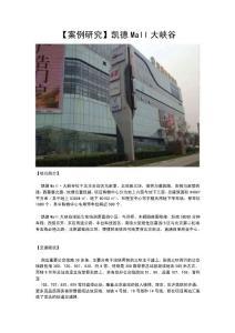 案例研究北京凯德MALL大峡谷