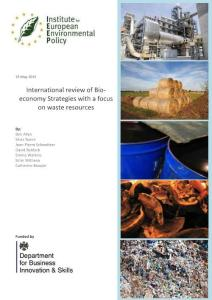 international review of bio- economy strategies with a ...