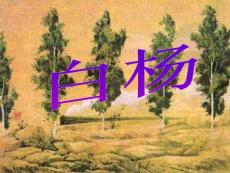 人教版五年级语文下册《白杨》课件详解