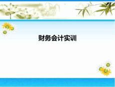 ppt-财务会计实训