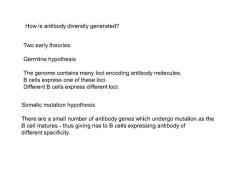 抗体的多样性是如何产生的antibody