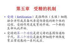 5.受精的机制
