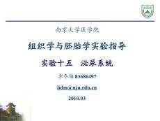 组织学与胚胎学实验(南京大学)  实验十五 泌尿系统