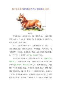 狗年说说那些描写狗的古诗..