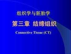 组织胚胎学课件 第三章 结缔组织