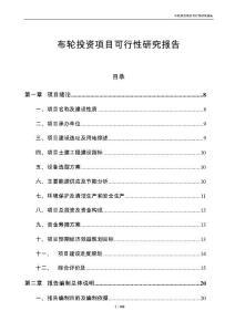 布轮投资项目可行性研究报告