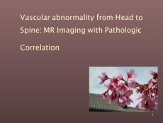 脑脊髓血管畸形mri及病理对照