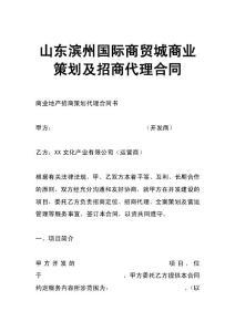 山东滨州国际商贸城商业策划及招商代理合同