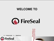 Fireseal - Flex-D 电缆管路防火密封产品与其它产品比较