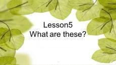 科普版小学英语四年级下册lesson5