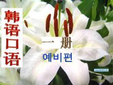 韩语基础入门 韩语口语学习(课堂ppt)