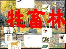 高中语文《牲畜林》精品课件 新人教版选修《外国小说欣赏》.ppt