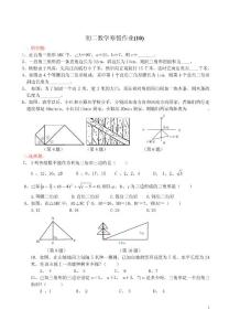 初二数学寒假作业(10) 勾股定理