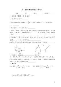 初二数学暑假作业(17)