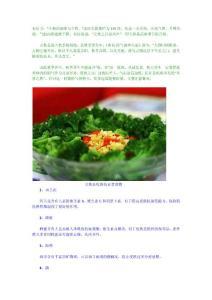 立秋必吃10种抗衰老食物