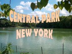 20110822central-park-new-york纽约中心花园y