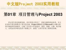 中文版Project 2003实用教程