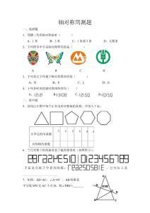 2011人教版八年级上国庆数学作业(轴对称)