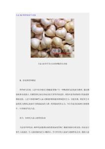 大蒜12种神秘养生功效