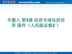 2012高考历史 经济全球化的世界 课件
