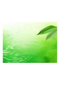 清爽绿叶、水、空气PPT背景图片大全