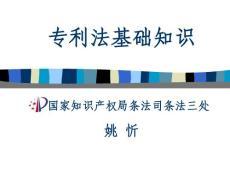 专利法基础知识(PPT-305)