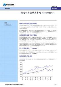 """专题报告:精选小市值股票中的""""Tenbagger"""""""