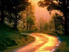 世界上最美的路