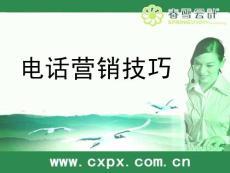【演讲致辞】春雪电话营销技巧培训ppt模版课件