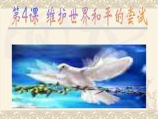 第4课  维护世界和平的尝试.ppt