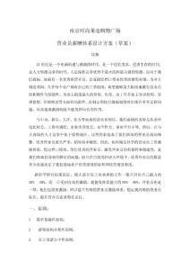 南京时尚莱迪购物广场营业员薪酬体系设计方案(草案).doc