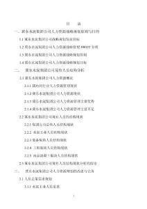 (最新)冀东水泥人力资源规划1