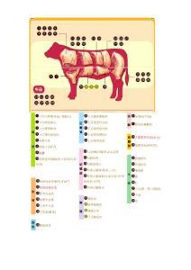 牛肉分割参考图