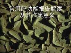肝功能解读.ppt