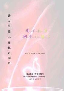 紫衣服装个性化定制网商务计划书