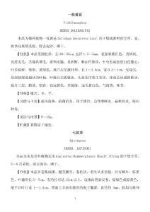 上海市中药材标准1994