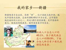 我的家乡新疆