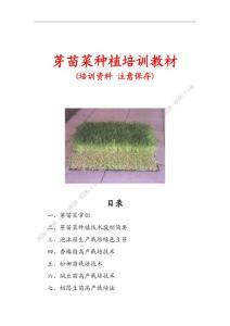 芽苗菜种植培训教材(目前涉及品种最全的资料)