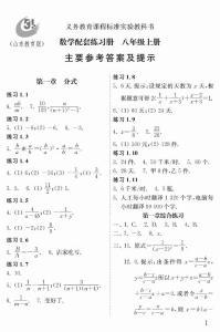 五四配套练习册数学八上 答案