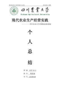 农学专业:生产实践报告