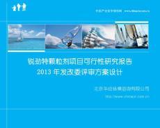 项目可行性研究报告模板(2013年发改委评审方案设计)