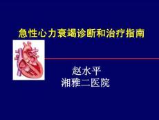 急性心衰治疗指南(2010)-赵水平
