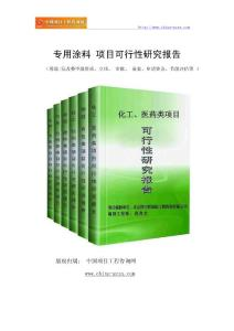 专用涂料项目可行性研究报告(范兆文-18810044308)