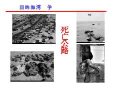 [军事/政治]审视海湾战争